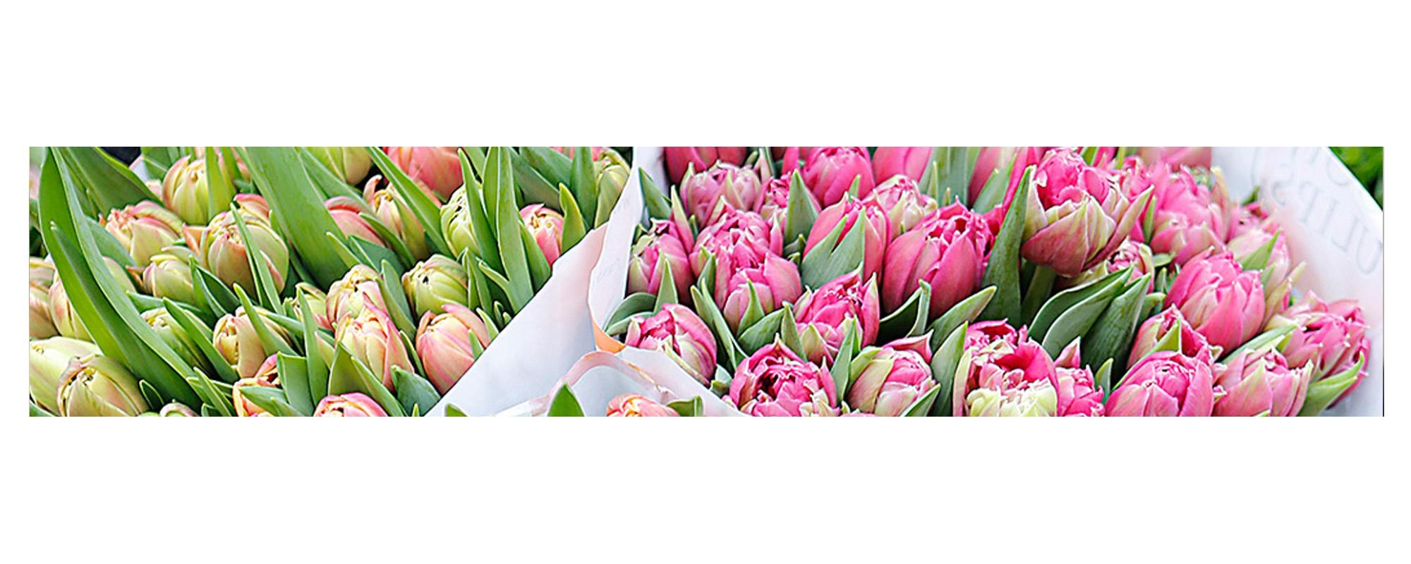 Bloemen | Producten | Joy Flowers